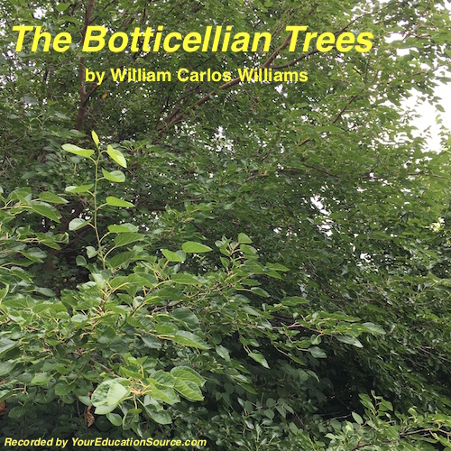 Botticeliian Trees Poem Your Education Source